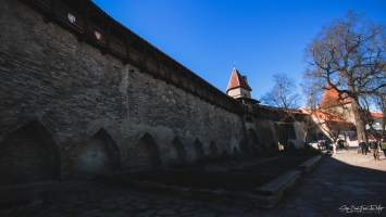 MAIDEN BOKŠTAS